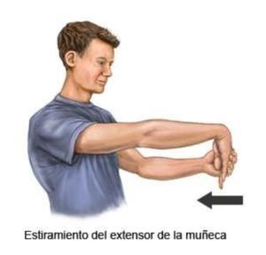ejercicio de estiramiento del extensor de la muñeca para tunel carpiano
