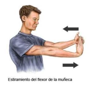 ejercicio de estiramiento del flexor de la muñeca para tunel carpiano